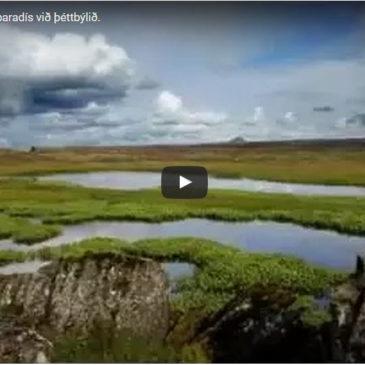 Reykjanesskaginn í nýju videói