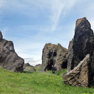 Núpshlíðarháls og Trölladyngja hefur myndast við eldgos undir jökli og þess vegna er móbergið allsráðandi, sem m.a.hefur getið af sér þessa tignarlegu kletta.
