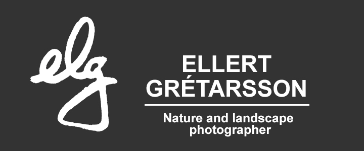 elg Photography